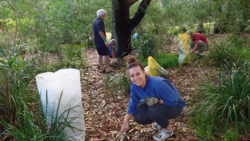 Ewen Park Bush Regen Site