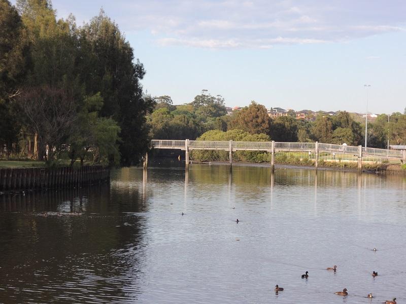 Cooks River 11