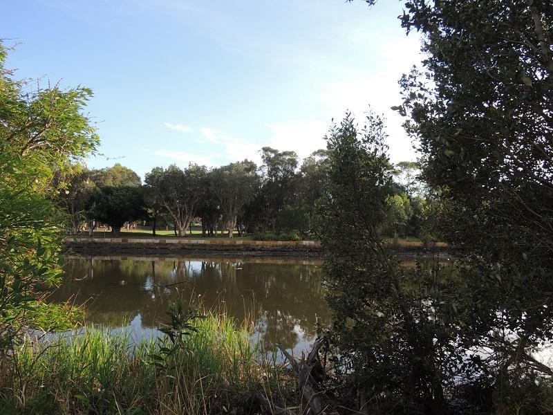 Cooks River 12