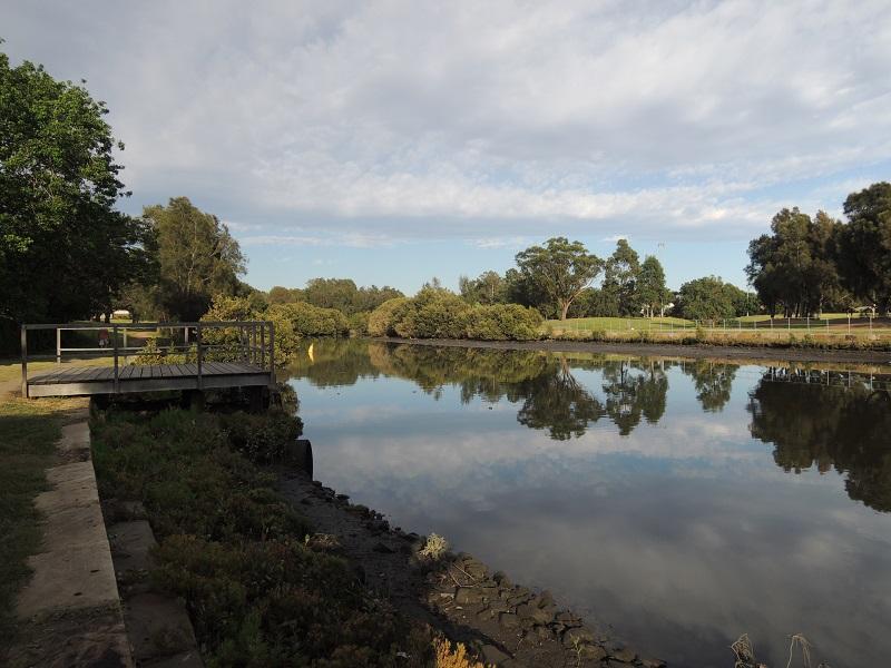 Cooks River 13