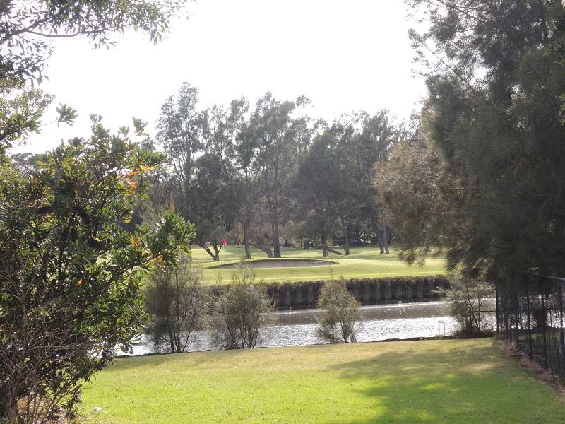 Cooks River 14