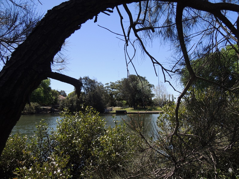 Cooks River 5