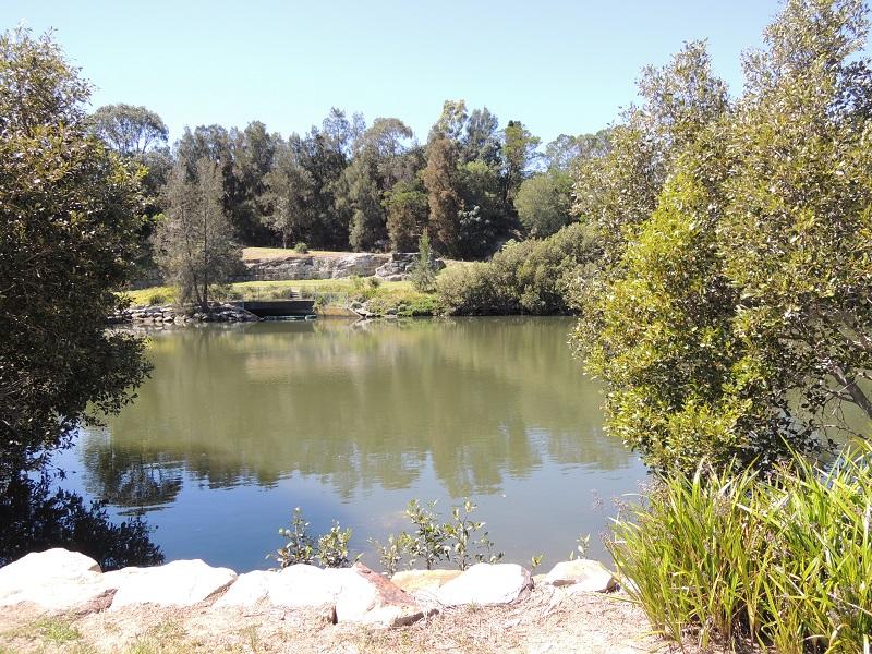 Cooks River 6