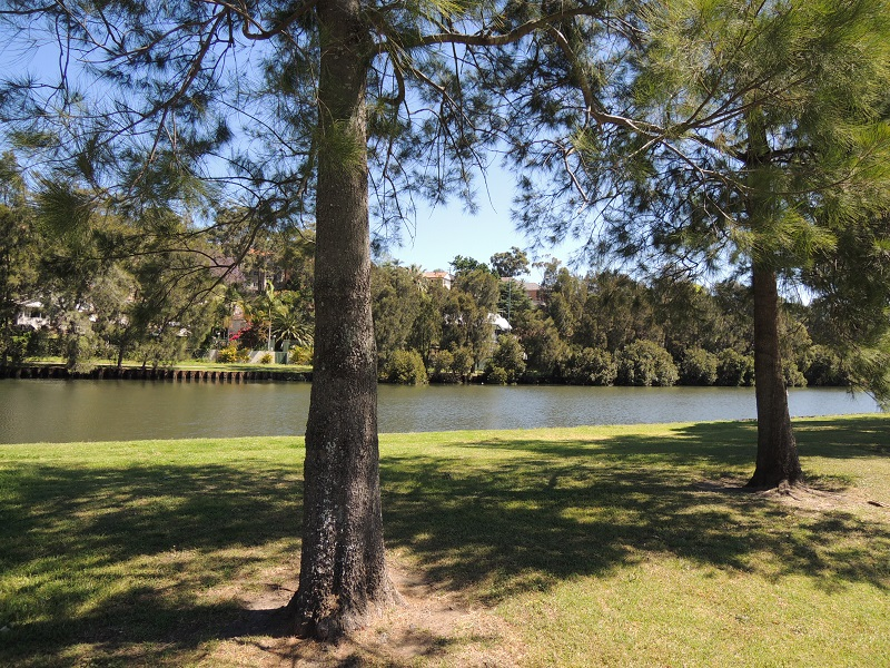 Cooks River 9