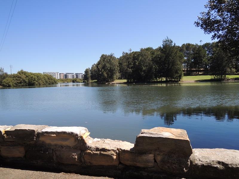 Cooks River1